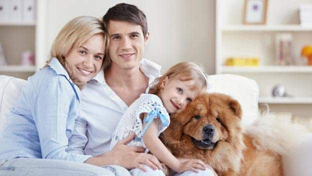 Wills & Trusts dog-young-family Direct Wills Wanstead